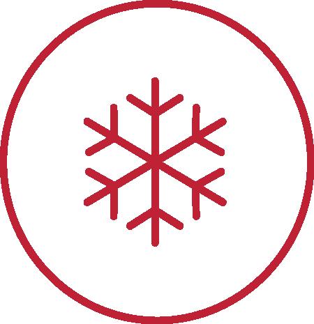 novedades congelados novum