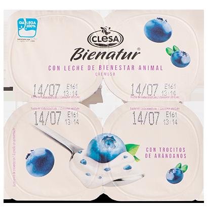 Yogur Bienatur Clesa Arándanos